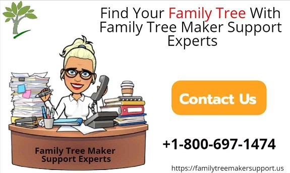 find your family tree