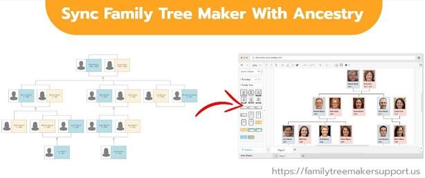 sync your family tree